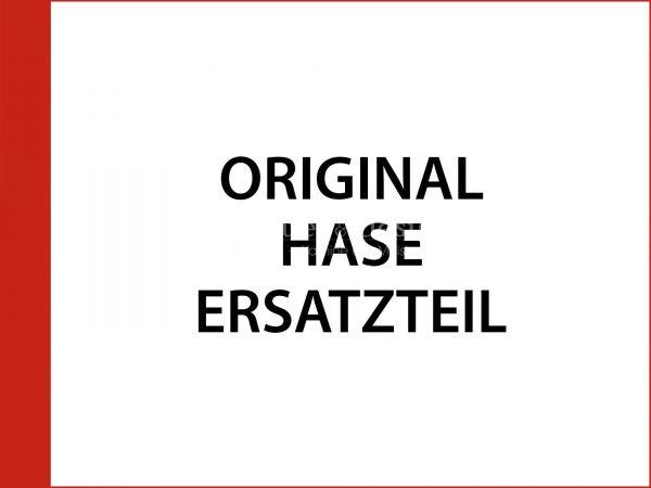 Kaminscheibe inkl. Dichtung zu Hase Elvas